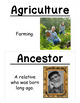 4th Grade Social Studies Vocabulary Cards: New York's Firs