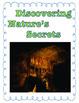 """4th grade Treasures Reading Unit 6 Week 3 """"Meet a Bone-ifi"""