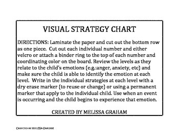 Visual Strategy Scale