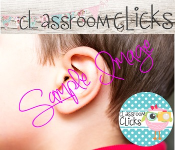 5 Senses - Hearing Image_176: Hi Res Images for Bloggers &