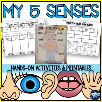 5 Senses Packet