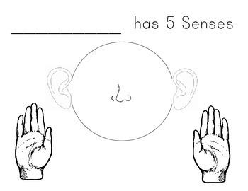 5 Senses Project
