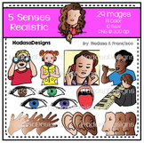 5 Senses Realistic Clip Art Set