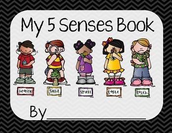 5 Senses Worksheet/Book- Black