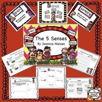 5 Senses Unit