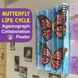 Life Cycle of a Butterfly Collaborative Agamograph Poster,