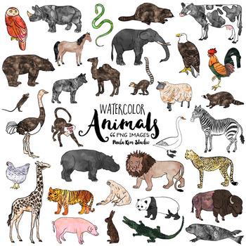 Watercolor Animal Clip Art Bundle