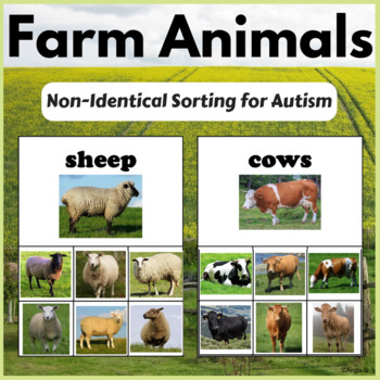 Non-Identical Sorting - Farm Animals for Early Interventio