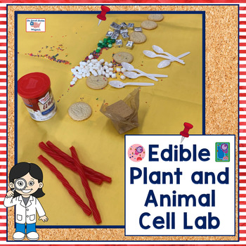 Edible Cell Lab Activity