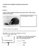 """6th Grade Interactive Reading Packet: Reading Street """"Into"""
