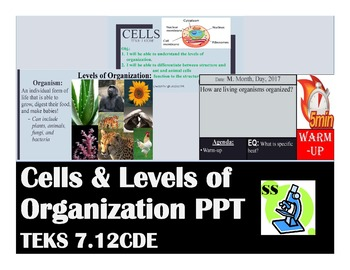 7.12CDE Cells and Levels of Organization Part 1