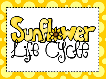 7 Sunflower Life Cycle Printable Posters/Anchor Charts.