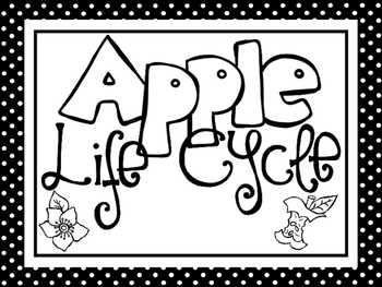 8 Black and White Apple Life Cycle Printable Posters/Ancho