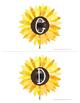 99 Cents Deal Fall themed Sunflowers Musical Alphabets Flashcard