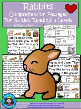 A+ Rabbits...Comprehension: Differentiated Instruction For