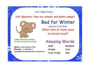 A Bed for Winter Flipchart Days 1-5 (Reading Street)