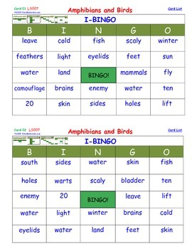 A Brilliant - I-BINGO – Amphibians and Birds - LS007 Inter