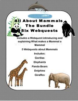 A Bundled Set Of Webquest Lessons-Marvelous Mammals!