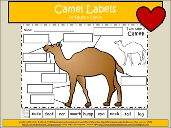 A+ Camel Labels