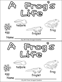 A Frog's Life Emergent Reader for Kindergarten- Life Cycles