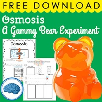 A Gummy Bear Experiment- Osmosis