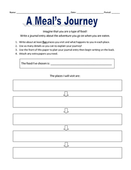 A Meal's Journey: Digestive System Writing Activity