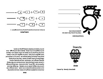 A Mini Booklet about Ants