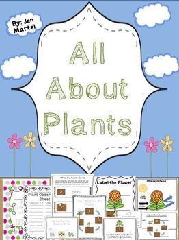 A Plant's Life Cycle ( a cross- curricular unit)