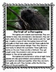 A Porcupine Named Fluffy Book Study