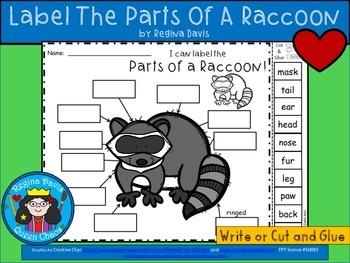 A+ Raccoon Labels