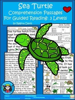 A+ Sea Turtle.... Comprehension: Differentiated Instructio