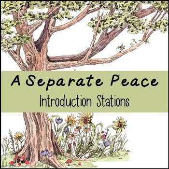 A Separate Peace Introduction Stations: A Fun Way to Intro