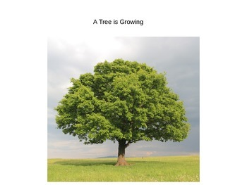 A Tree is Growing Journey's