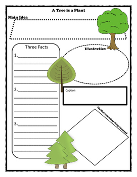 A Tree is a Plant Story Map - Graphic Organizer