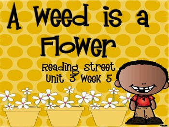 A Weed is a Flower {Reading Street Series Grade 2}