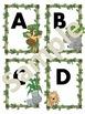 ABC's & 123's Jungle Theme
