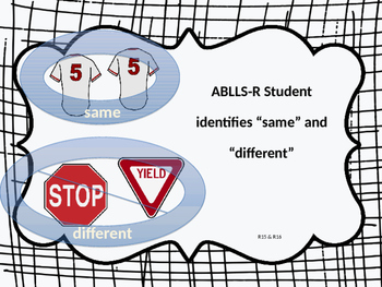 ABLLS-R Label Same or Different