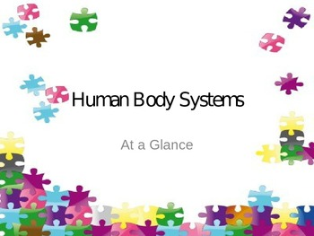 Human Body Wrap Up Activity - Puzzle