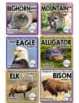 AMERICAN ANIMALS BUNDLE