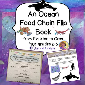 AN OCEAN FOOD CHAIN FLIP BOOK from PLANKTON TO ORCA w/CRAFT
