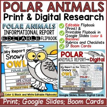 ANIMAL REPORT: POLAR ANIMALS: INFORMATIVE WRITING