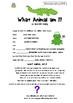 ANIMAL - WHAT AM I? Write a Mystery Animal Poem