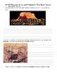 AP Art History Unit 1 Test Elements of Art and Prehistoric Art