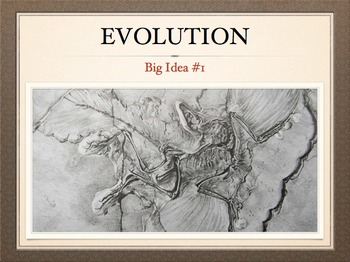 AP Bio Big Idea 1 - Evolution: Complete Unit for the Flipp
