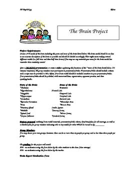 AP Psychology - Brain Project