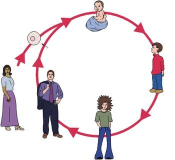AP Psychology: Developmental - Prenatal Development and th