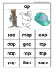 AP Rhyming Word Family Matching, Sorting, Writing, and Rea