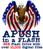 APUSH in a FLASH