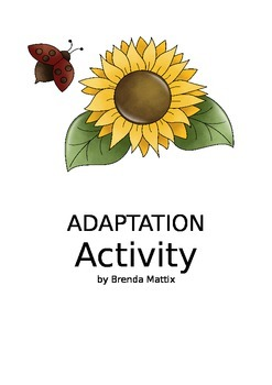 Adaptation Activity