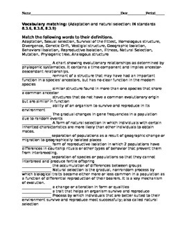 Adaptation and natural selection high ability vocabulary t